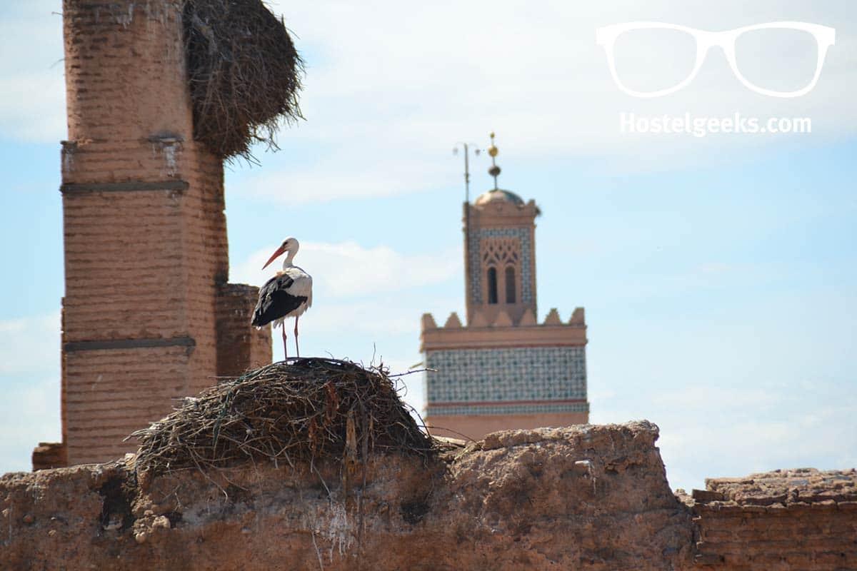 Alternative Guide for Marrakesh