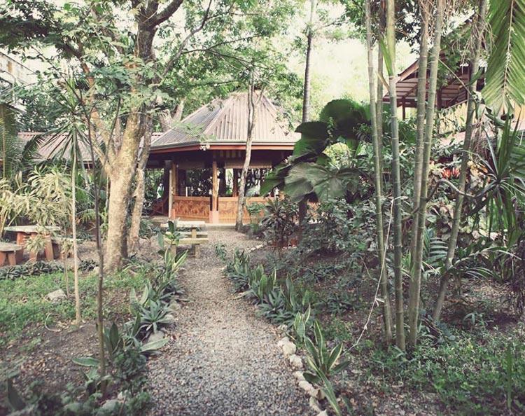 Casa Zen Guesthouse in Santa Teresa Beach Costa Rica