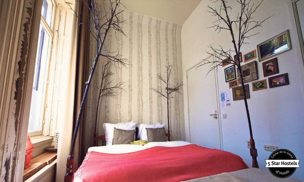 A tree in a room? Yeah! As Cocomama Hostel