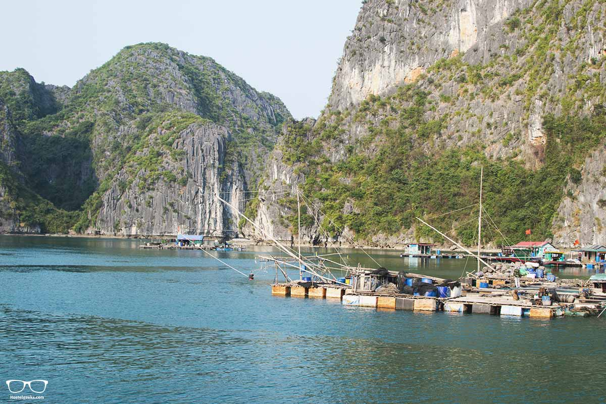 halong bay picture gallery - 1000 and 1 limestone in the Ha Long Bay, Gulf of Tonkin, Vietnam