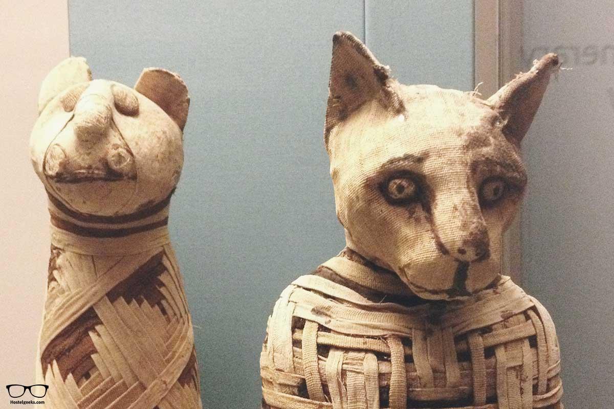 Mummies at British Museum