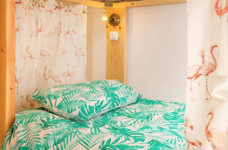 Best hostels in Canarias: Avocado Surf Hostel