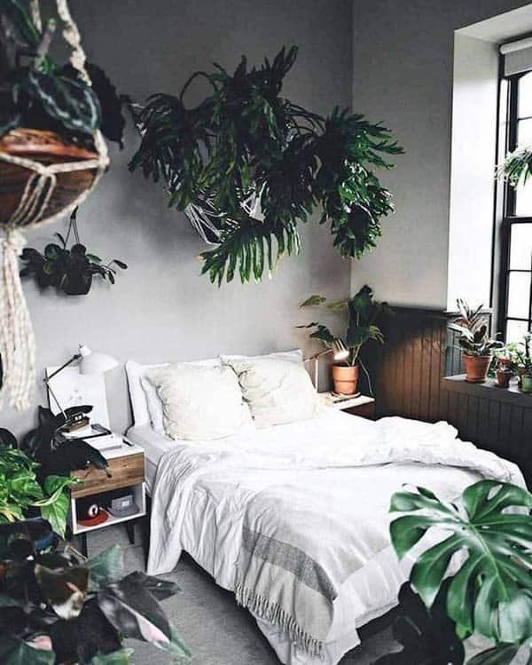 Urban Jungle Boutique Hostel in Malaga