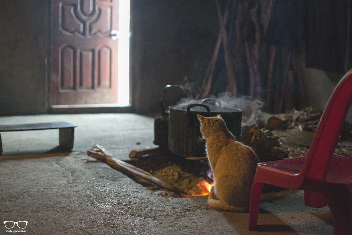 Heating system - even the cat didn't want to leave the fire alone