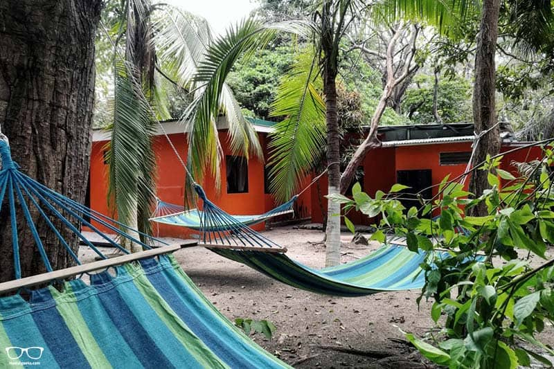 Zeneidas Surf Garden one of the best hostels in Costa Rica