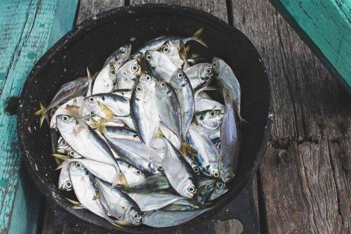 Vietnam Travel Photos - Ha Long Bay