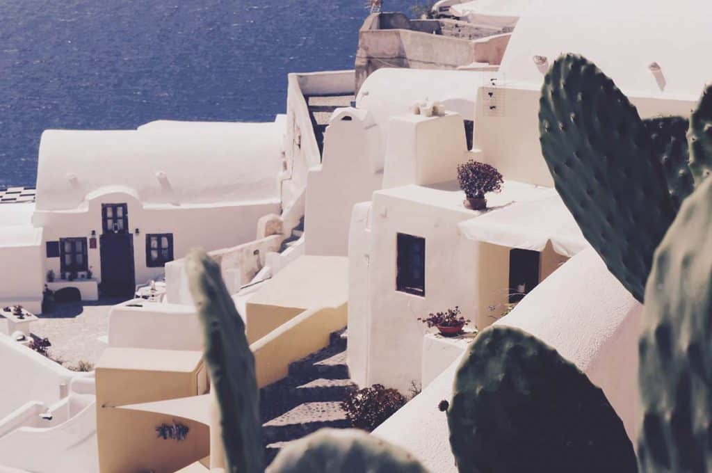 Cactus and Santorini