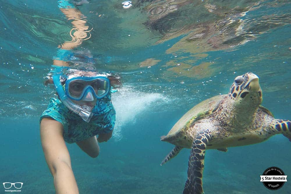 Things to do in Sri Lanka: Snorkel