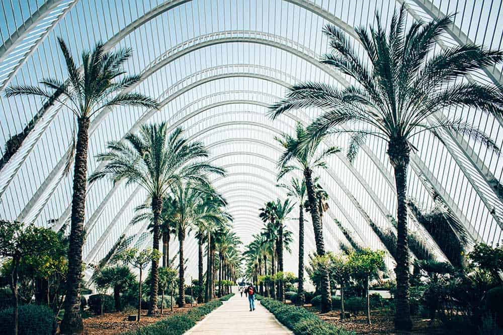 The Umbracle at the city of Arts and Science in Valencia
