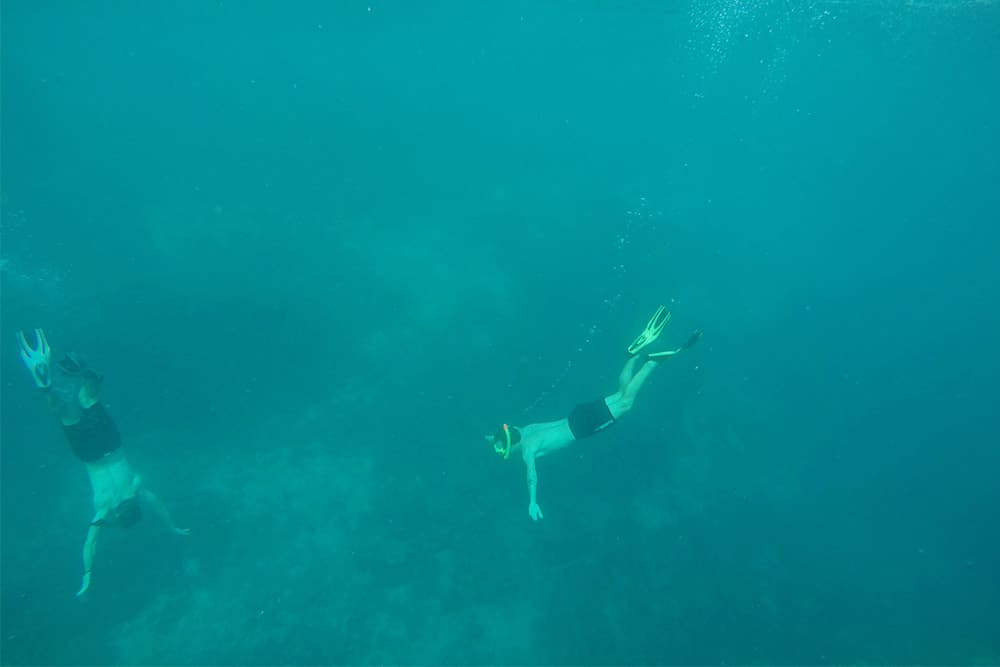 Snorkeling at the Gili Trawangan, Lombok, Indonesia