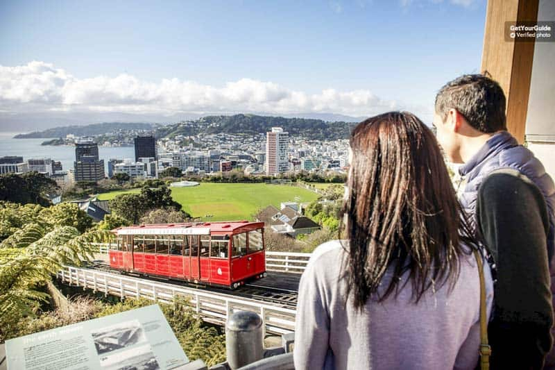The Sightseeing Tour in Wellington