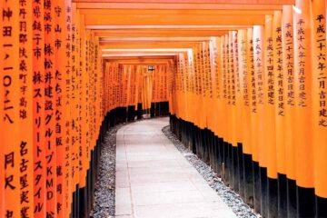 Best Hostels in Kyoto, Japan