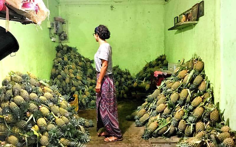 A Pineapple Paradise in Kandy, Sri Lanka