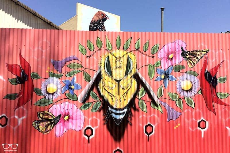 Street art festival things to do in Alice Springs