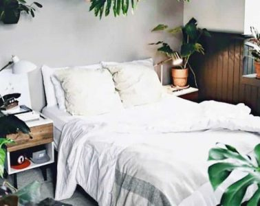 3 Best Hostels in Málaga, Spain - Welcome to the Jungle