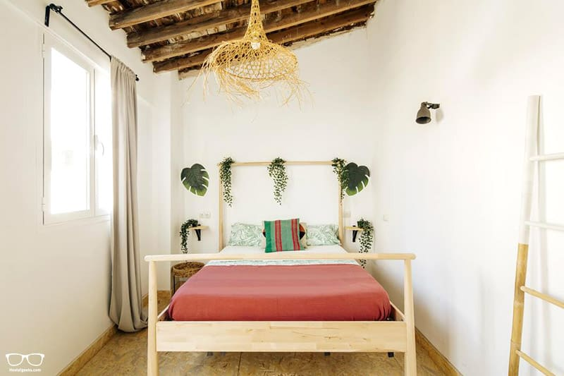 The Urban Jungle Hostel one of the best hostels in Malaga, Spain