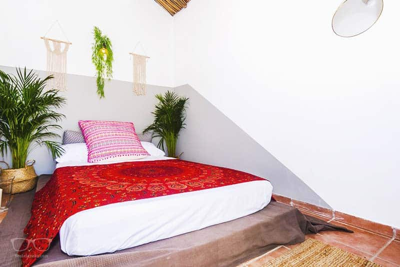 Double Room at Urban Jungle Hostel in Malaga, Spain - the best hostel for couples