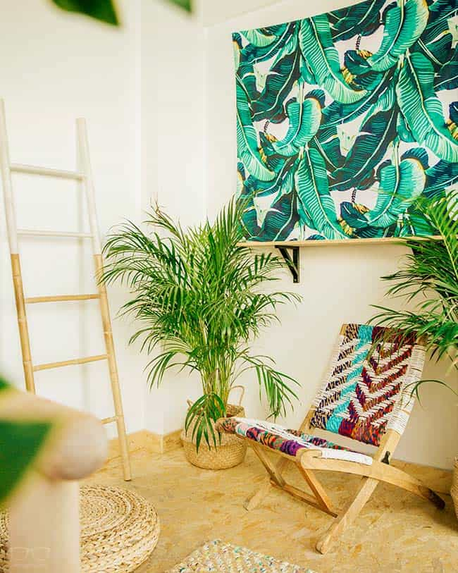Best Hostels in Malaga - Go with Urban Jungle Hostel