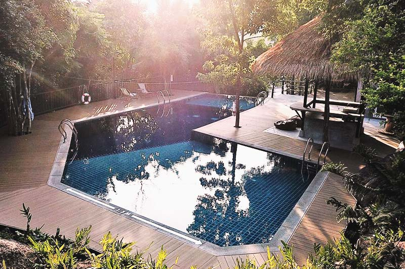 Feel the nature vibes of the pool of The Dearly Koh Tao Hostel