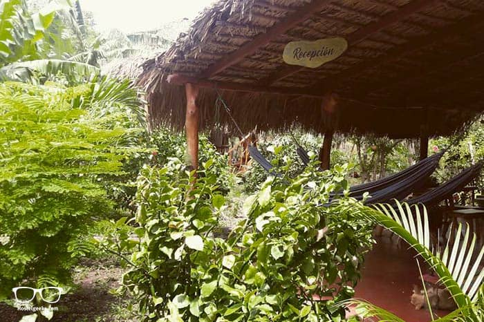 La Urraca Loca Hostel is one of the best hostels in Nicaragua, Central America