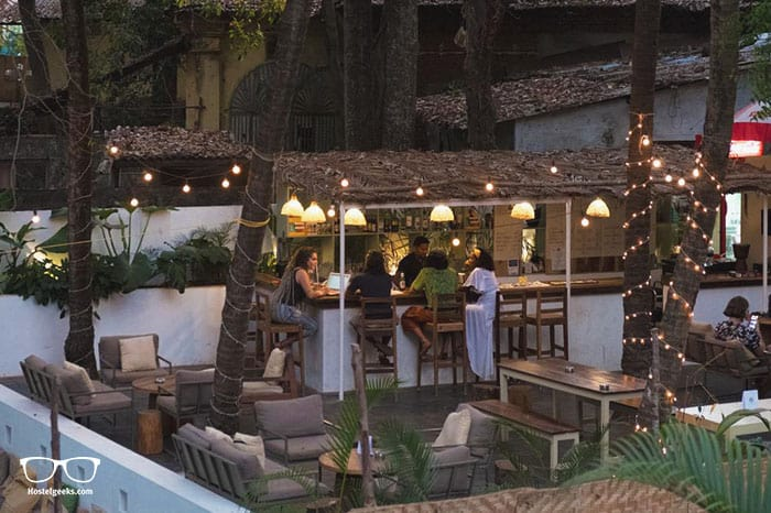 JUNGLE by thehostelcrowd is one of the best hostels in Goa, India