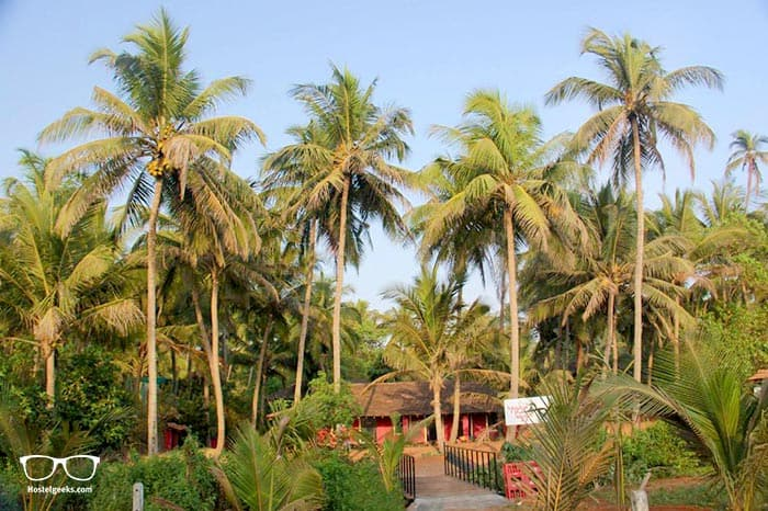 The Yuppi Hippi Hideout is one of the best party hostels in Goa, India