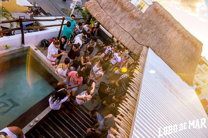 Lobo de Mar Hostel is one of the best party hostels in Playa del Carmen, Mexico