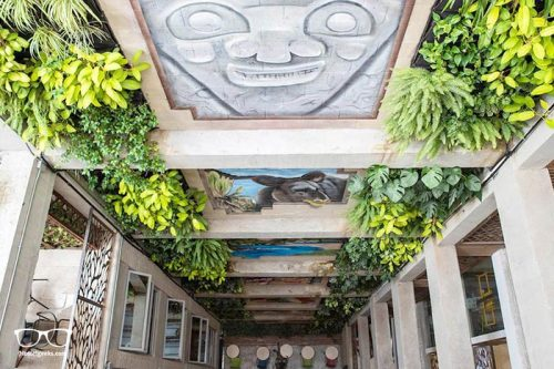 Los Patios Hostel is a beautiful design and 5 star hostel in Medellin, Colombia