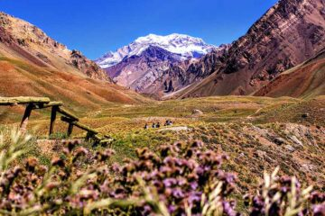 3 Best Hostels in Mendoza, Argentina