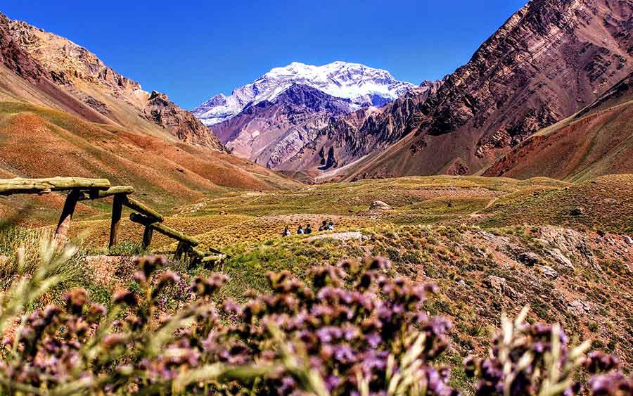 3 Best Hostels in Mendoza, Argentina