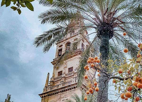 Bell Tower in Cordoba, Spain