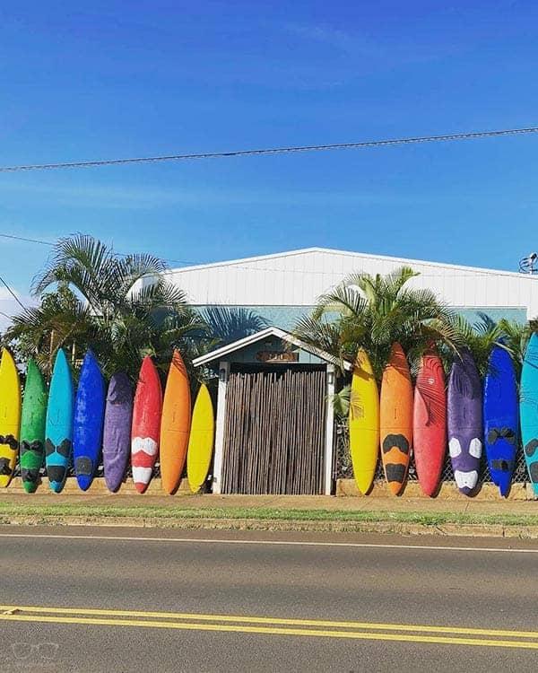 Aloha Surf Hostel is one of the best hostels in Maui, Hawaii