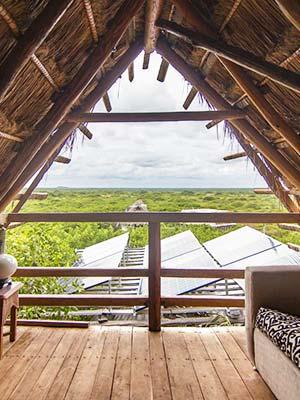 Bambu Gran Palas