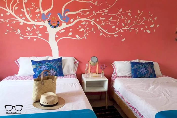 Azul Cielo Hostel is one of the best hostels in Mexico, North America
