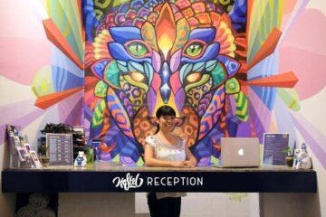 3 Best Hostels in Cozumel, Mexico